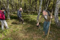 El coordinador del proyecto sobre el terreno, Luis Robles, muestra las arandaneras