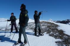 agentes medioambientales de la Junta de Castilla y León en labores de búsqueda