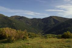 La Fundación Patrimonio Natural de Castilla y León licita trabajos de mejora de hábitat en el marco del LIFE+ Urogallo cantábrico