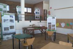 Exposición del urogallo cantábrico en el Parque Natural de Redes (Asturias)