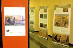 Exposición del urogallo cantábrico en San Juan de la Arena (Soto del Barco)