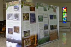 Exposición del LIFE+ Urogallo cantábrico en la Universidad de León