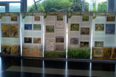 Exposición del proyecto LIFE+ Urogallo cantábrico en Benia de Onís (Asturias)