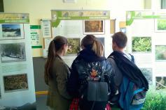 Exposición sobre el urogallo cantábrico en el Campus de Ponferrada de la Universidad de León