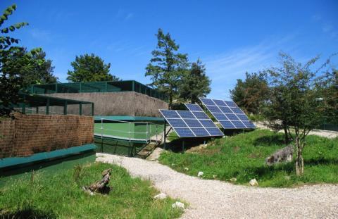 Centro de cría y reserva genética de Sobrescobio (Parque Natural de Redes). @César Pollo