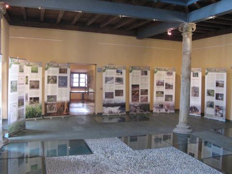 Exposición sobre el urogallo cantábrico
